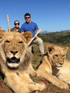 Walking with lions Botlierskop