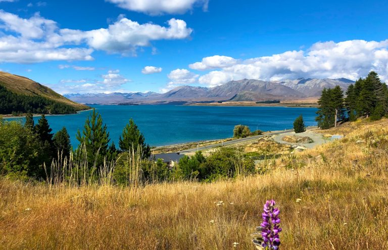 New Zealand: A 12-Day Itinerary