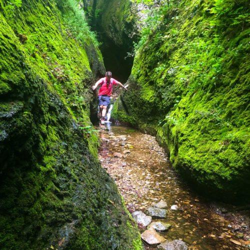 Birtsvisi Canyon